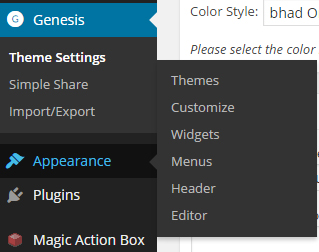 """Go to """"Appearances"""" > """"Editor"""""""
