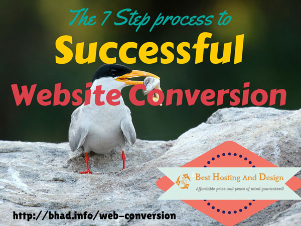 The 7 Step process to successful website conversion