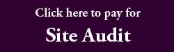 Click here to pay for site audit