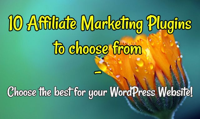 10 Best Affiliate Marketing Plugins for your WordPress Website