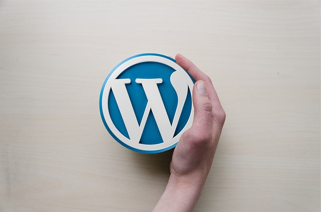 Crucial things to do after installing WordPress