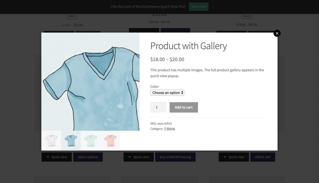 product quick view example