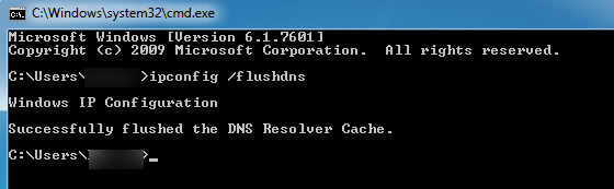 flushing your DNS